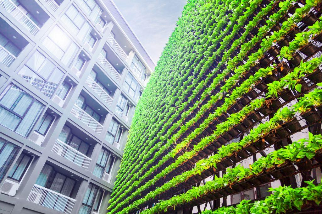 An der Wand eines mit Pflanzen bedeckten Gebäudes wachsen Pflanzen in speziellen Hydroponiktöpfen